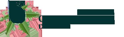olejki logo